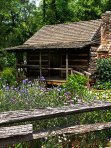 Historic cabin surrounded by wildflowers, trees, and a fence.