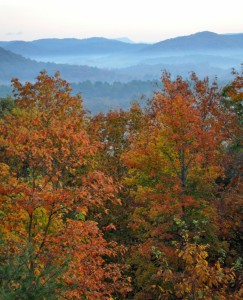 colorful fall trees in the foreground with misty blue mountains in the background.
