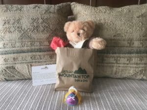 Cute little teddy bear sticking out of a gift bag that is leading against a pillow on a bed.