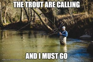 """Man fishing in a river with the words, """"The trout are calling and I must go."""""""