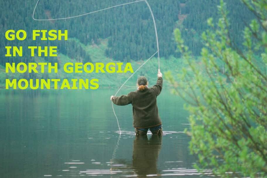 Fishing in the northeast georgia mountains for North georgia fishing