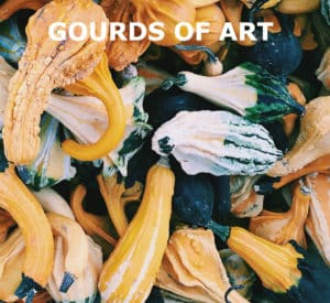 "A close-up photo of mixed varieties of gourds with title, ""Gourds of Art."""