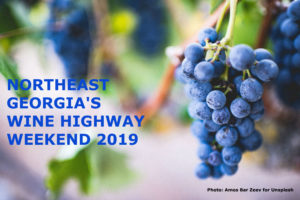 A cluster of purple grapes with the title: Northeast Georgia's Wine Highway Weekends 2019.