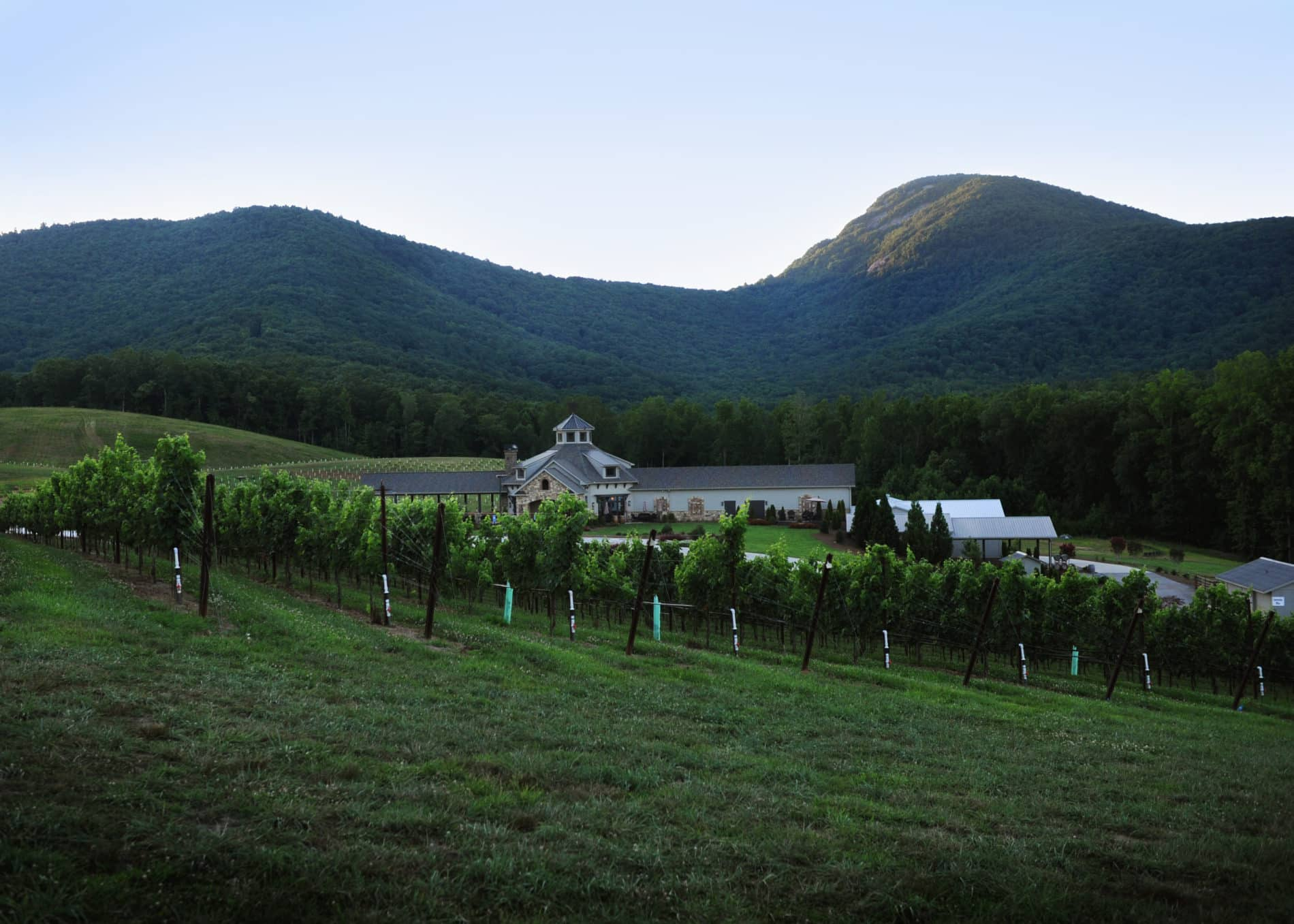 spring events at north georgia mountain wineries